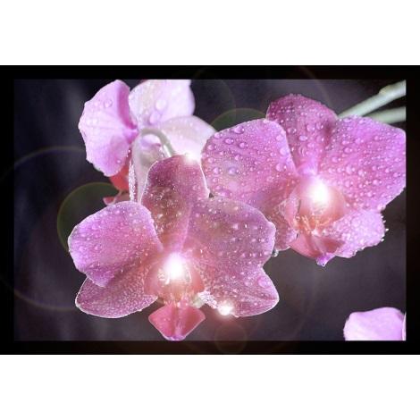 Eglo 75036 - Dekoratív lámpa Orchideák 4xLED/0,02