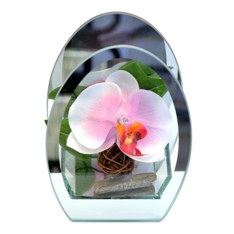 Eglo 75156 - LED dekoratív lámpa ORCHIDEJ 1xLED/4,5W