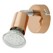 Eglo 94772 - LED Spotlámpa BUZZ-COPPER 1xGU10/3W/230V