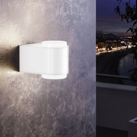 Eglo 95077 - Kültéri fali lámpa BRIONES 2xLED/3W/230V