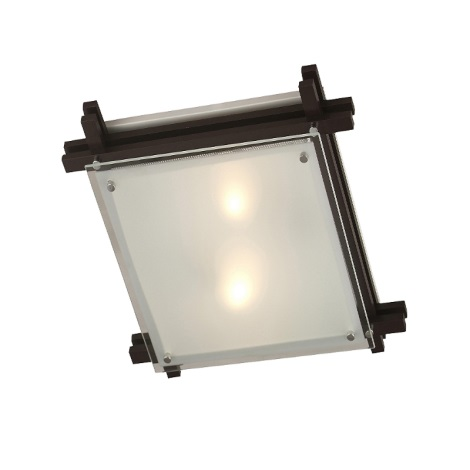 GLOBO 48324-2 - Mennyezeti lámpa  EDISON 2xE27/60W/230V