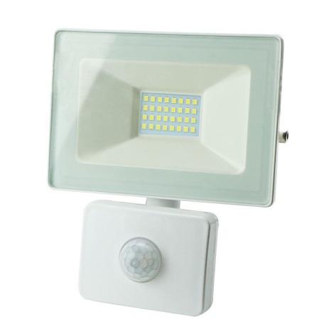 LED Reflektor érzékelővel LED/10W/230V IP65