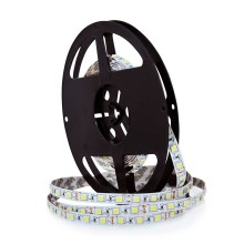 LED Szalag 5m 45W/12V IP20 6000K