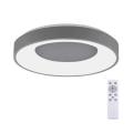 Leuchten Direkt 14326-18 - LED Dimmelhető mennyezeti lámpa ANIKA LED/30W/230V + távirányító