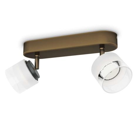 Philips 53332/06/16 - LED spotlámpa FREMONT 2xLED/4W/230V